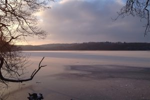 grundlageseminar-caputh-wintersee